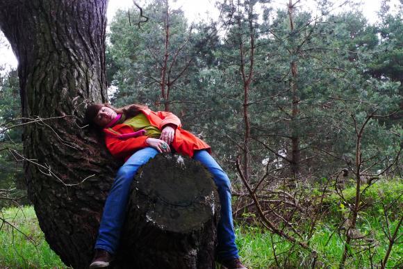 http://clignotants.cowblog.fr/images/Decembre2009/P1200593.jpg