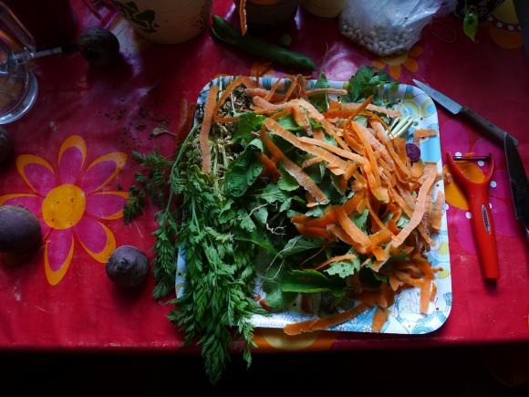 http://clignotants.cowblog.fr/images/Juillet09/P1030192.jpg