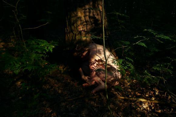 http://clignotants.cowblog.fr/images/Juillet09/P1040762.jpg