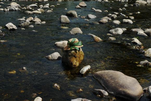 http://clignotants.cowblog.fr/images/Juillet09/P1060410.jpg